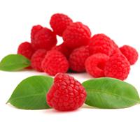 Raspberry Activity
